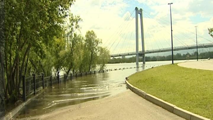 Потерял в талии: уровень воды в Енисее упал на 3,5 см