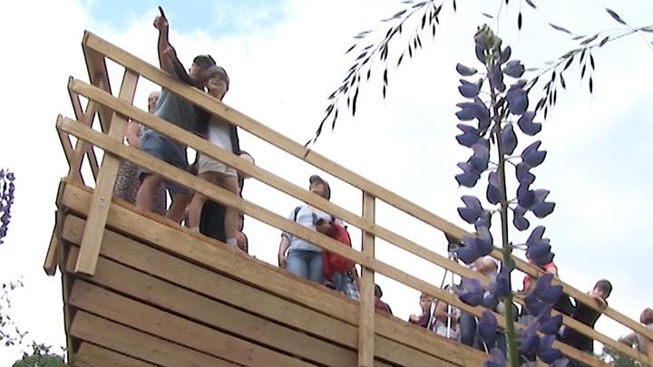 По факту обрушения смотровой площадки в Краснолесье возбудили уголовное дело