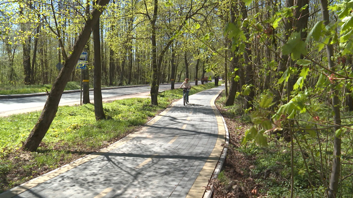 Велодорожки соединят Калининградскую область и Польшу