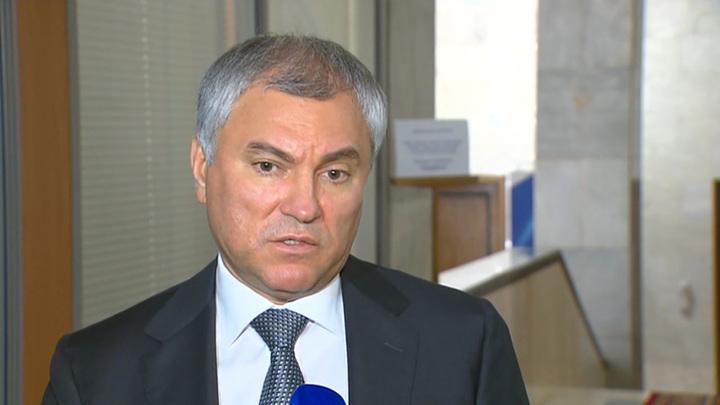 Володин призвал жестко пресекать бизнес по торговле сертификатами о вакцинации