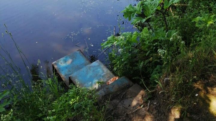 4-летний ребенок утонул в пруду в Ярославской области