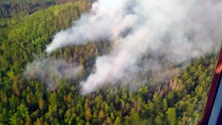 Оранжевый уровень опасности: в Самарской области стоит аномальная жара