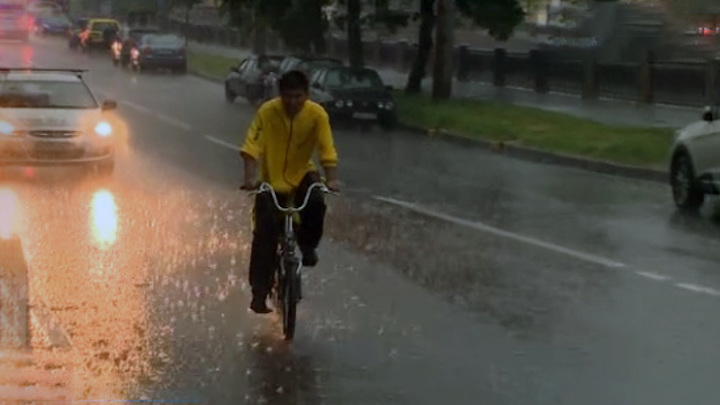МЧС предупредило о грозе и порывистом ветре в Москве