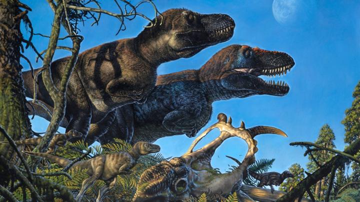 Пара тираннозавров с детёнышами. Так художник представляет себе жизнь динозавров мелового периода в Арктике.