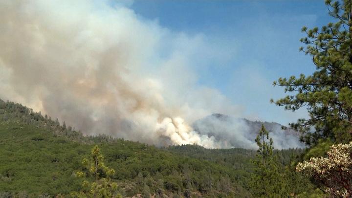 Огонь пожирает Канаду и США на фоне аномальной жары