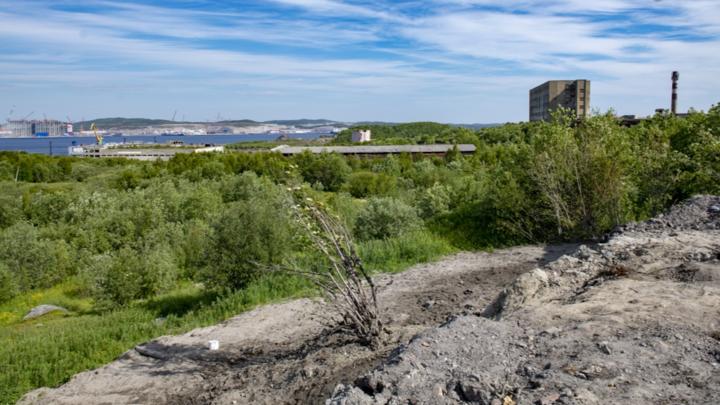 В Мурманской области убрали несанкционированную свалку покрышек