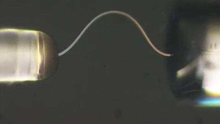 Микроволокно льда диаметром 4,4 микрометра может изогнуться почти в круг радиусом 20 мкм.
