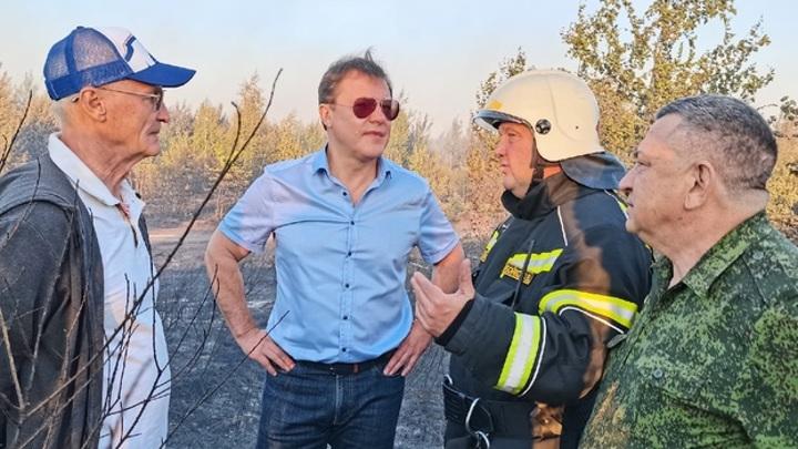 Поджог мог стать причиной пожара в тольяттинском лесу