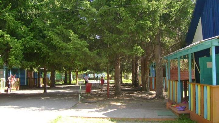 Случаи коронавируса выявлены в двух детских оздоровительных лагерях Алтая
