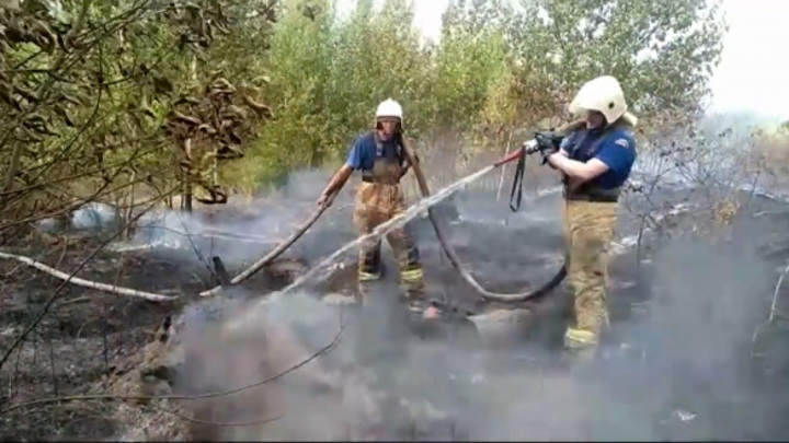 Пожар охватил 70 гектаров леса в Костромской области