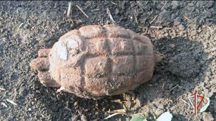 Британскую гранату нашли в Тюменской области