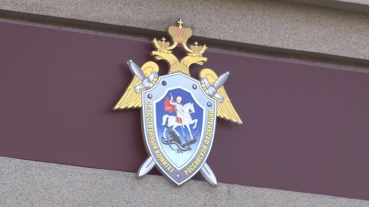 Краснокамские мошенники похитили средства маткапитала на 17 млн рублей
