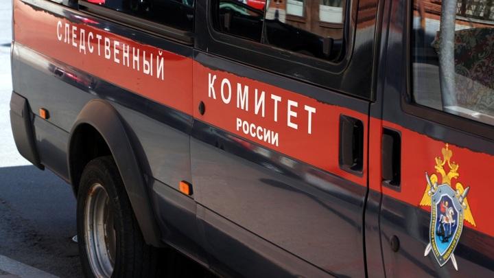 СК начал проверку по факту гибели дельтапланериста в Башкирии