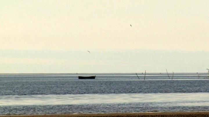 В Белом море ищут пропавшего накануне рыбака
