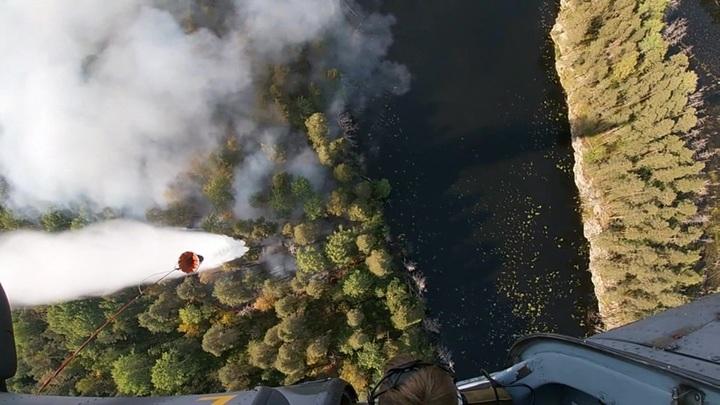 В России удалось стабилизировать ситуацию с природными пожарами