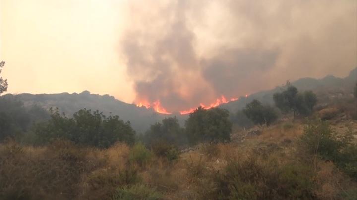 Лесной пожар перекинулся на ТЭЦ в турецкой провинции Мугла