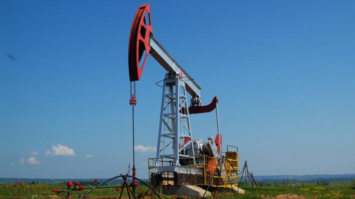 Правительство готовит план сокращения потребления нефти и газа