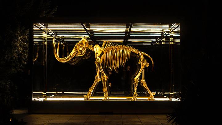 Шерстистые мамонты полностью вымерли около 4 000 лет назад. Исследователи всё ещё разбираются, почему это произошло.