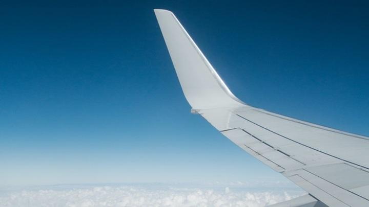 Из Петрозаводска планируется запустить авиарейсы в Воронеж