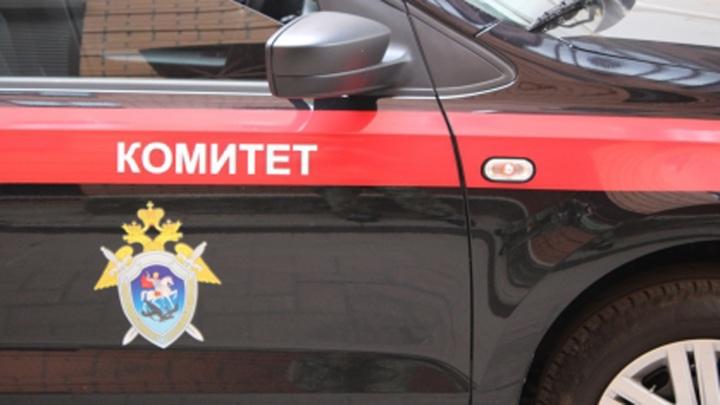 В Иванове возбуждено уголовное дело по факту разбойного нападения на детей