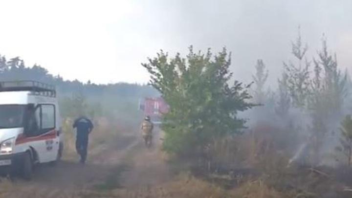 В Тольятти из-за лесных пожаров введен режим ЧС