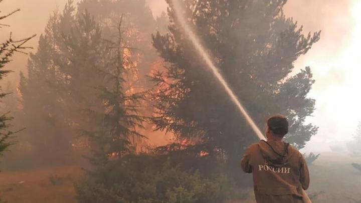 Более 200 человек задействованы на тушении лесных пожаров в Якутии