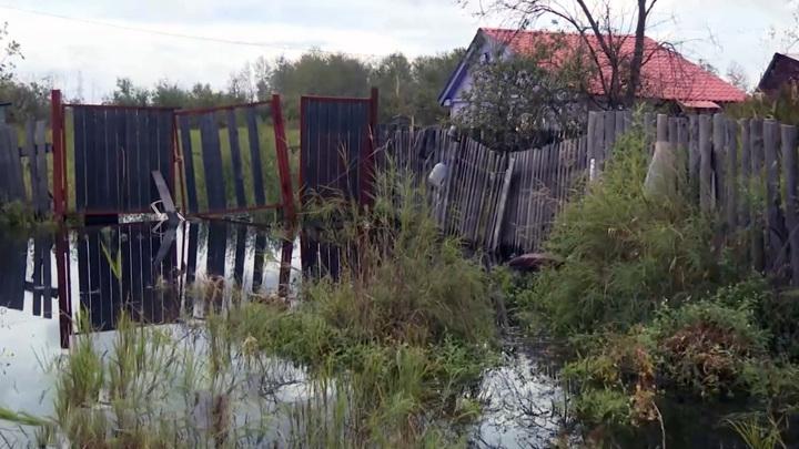 МЧС сообщает о снижении уровня Амура у Хабаровска