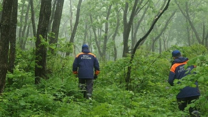 В Мурманской области  спасатели нашли пропавшего человека