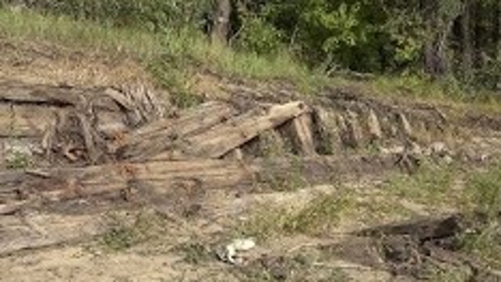 Житель Омска искал рыбу, а нашел обломки старинного корабля