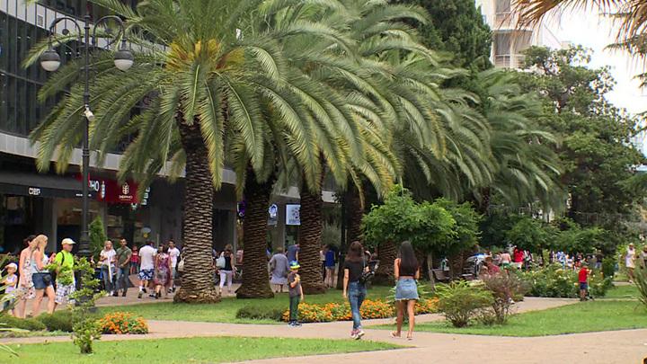 Сочи назван самым зеленым городом страны