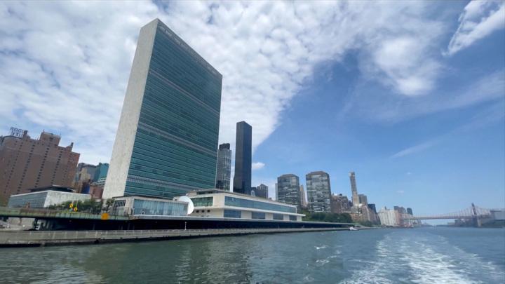 ООН отреагировала на оскорбления украинского дипломата в адрес журналиста