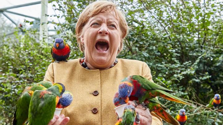 Германия перед выборами: такую Меркель немцы еще не видели