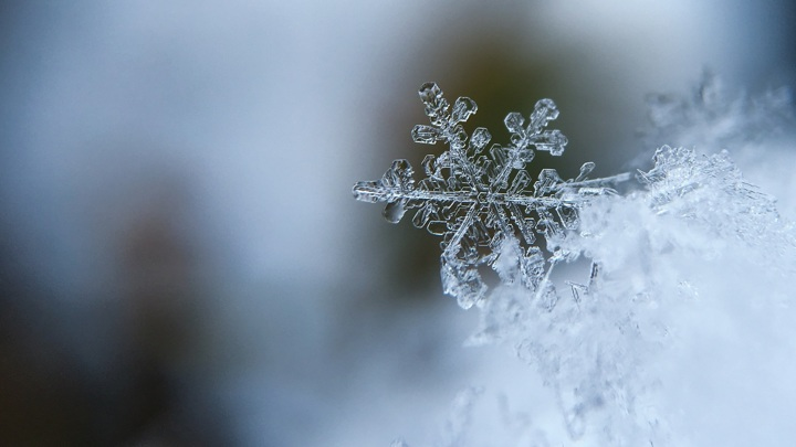 Областную столицу Кузбасса засыпало снегом