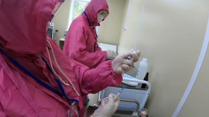 COVID-19 в РФ: заболеваемость и смертность слегка снизились