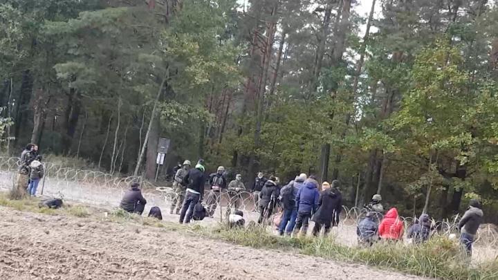 Пограничники Польши и Белоруссии обвинили друг друга в выдворении беженцев