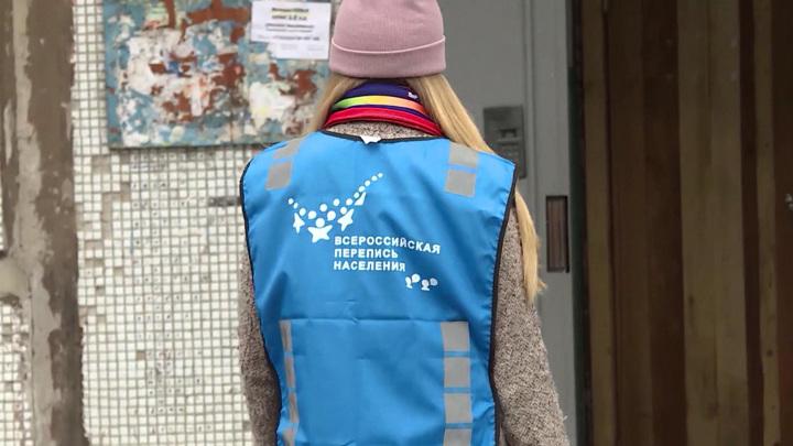 Пять миллионов россиян прошли перепись на портале госуслуг