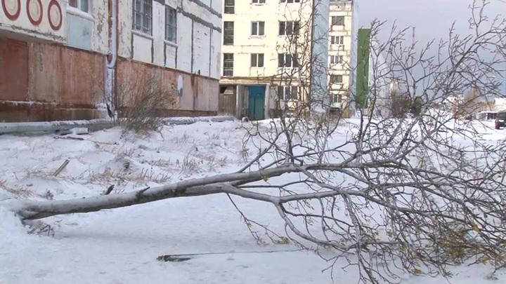 Кружащиеся в танце авто: Сахалин остается во власти непогоды