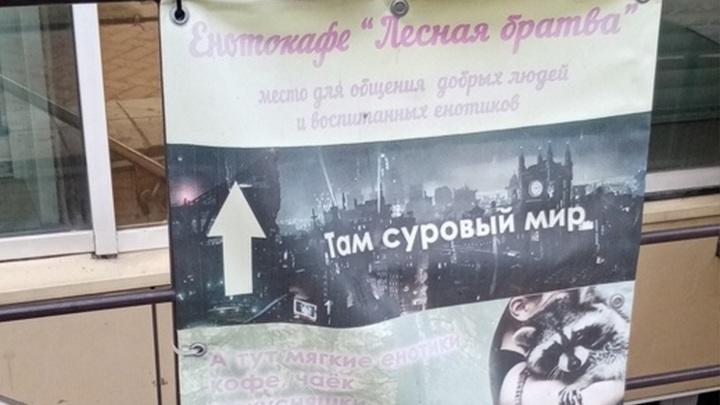 В Новосибирске дикие звери напали на посетителей енотокафе