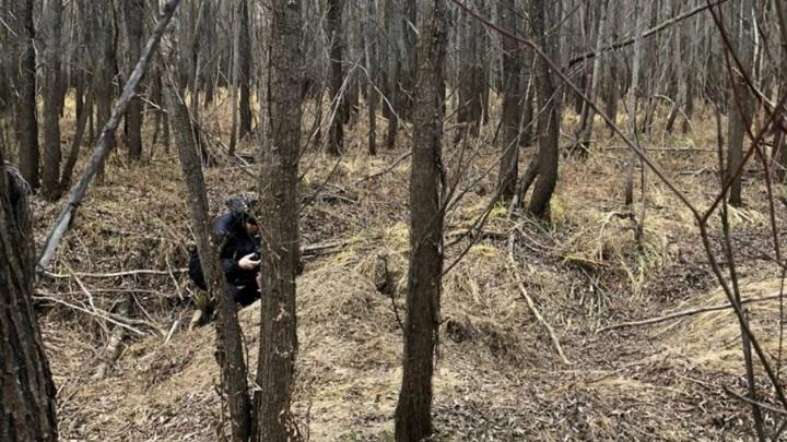 Рыбак ножом отбился от задравшего его приятеля медведя