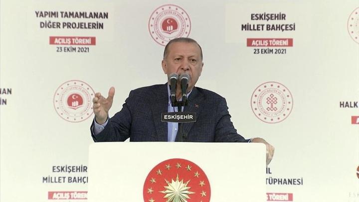 Турецкая лира рухнула после высылки послов США и ЕС