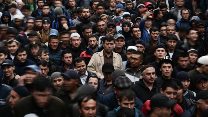 Глава костромской строительной компании организовал канал нелегальной миграции