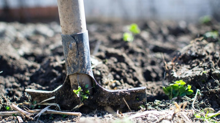 Вред земле: жительницу Владимирской области оштрафовали на 2 миллиона