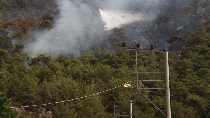 Семь россиян задержаны в Турции по подозрению в поджоге леса
