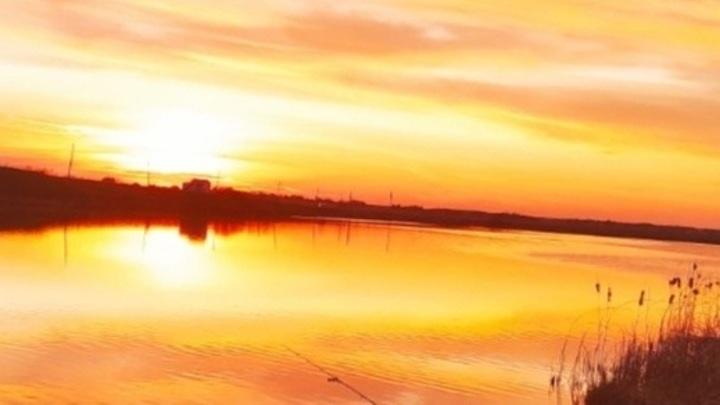 В Сызрани обнаружили озеро с опасной кислотой
